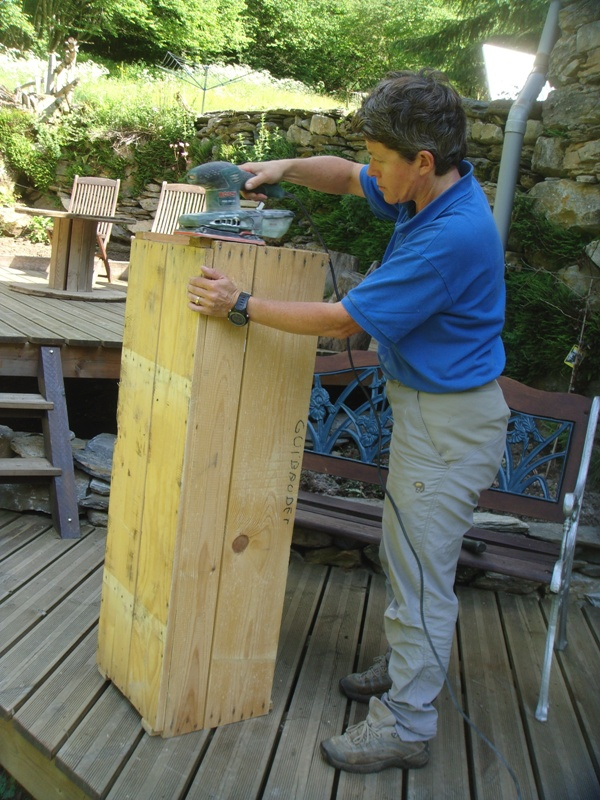 Breezy starts on the log box