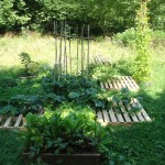 Raised bed wings