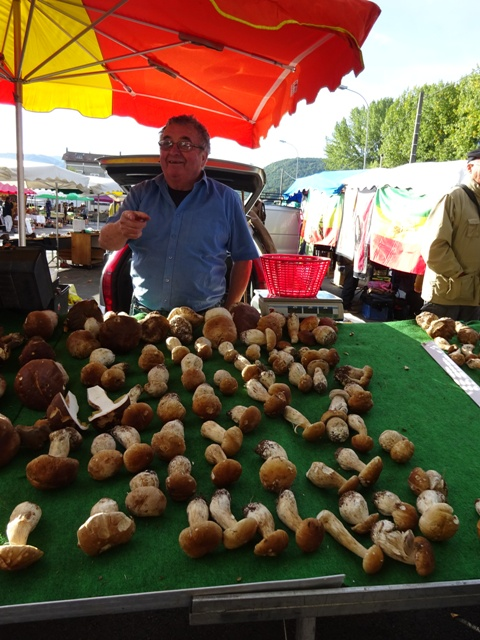 Ceps on the market